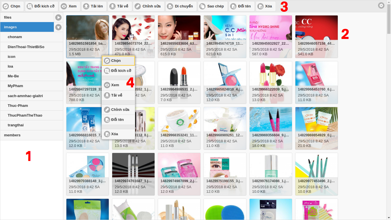 Web30s] Hướng dẫn sử dụng CKFinder